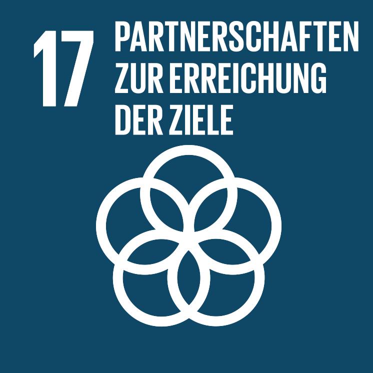 17 Partnerschaften zur Erreichung der Ziele